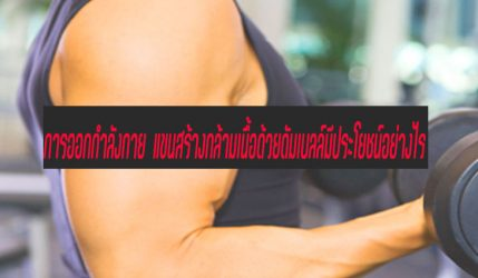 การออกกำลังกาย แขนสร้างกล้ามเนื้อด้วยดัมเบลล์มีประโยชน์อย่างไร